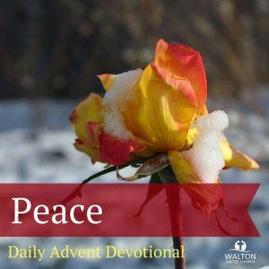 Advent 19 - Peace @ Walton United Church, Oakville, Ontario
