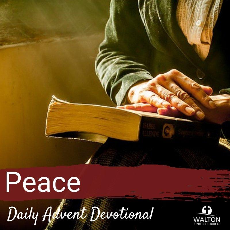 Peace - Advent Devotional