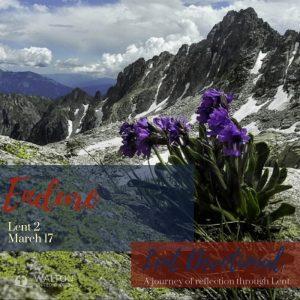 Endure - Lent Devotional