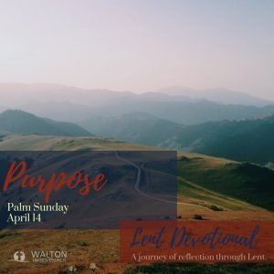 Purpose - Lent Devotional